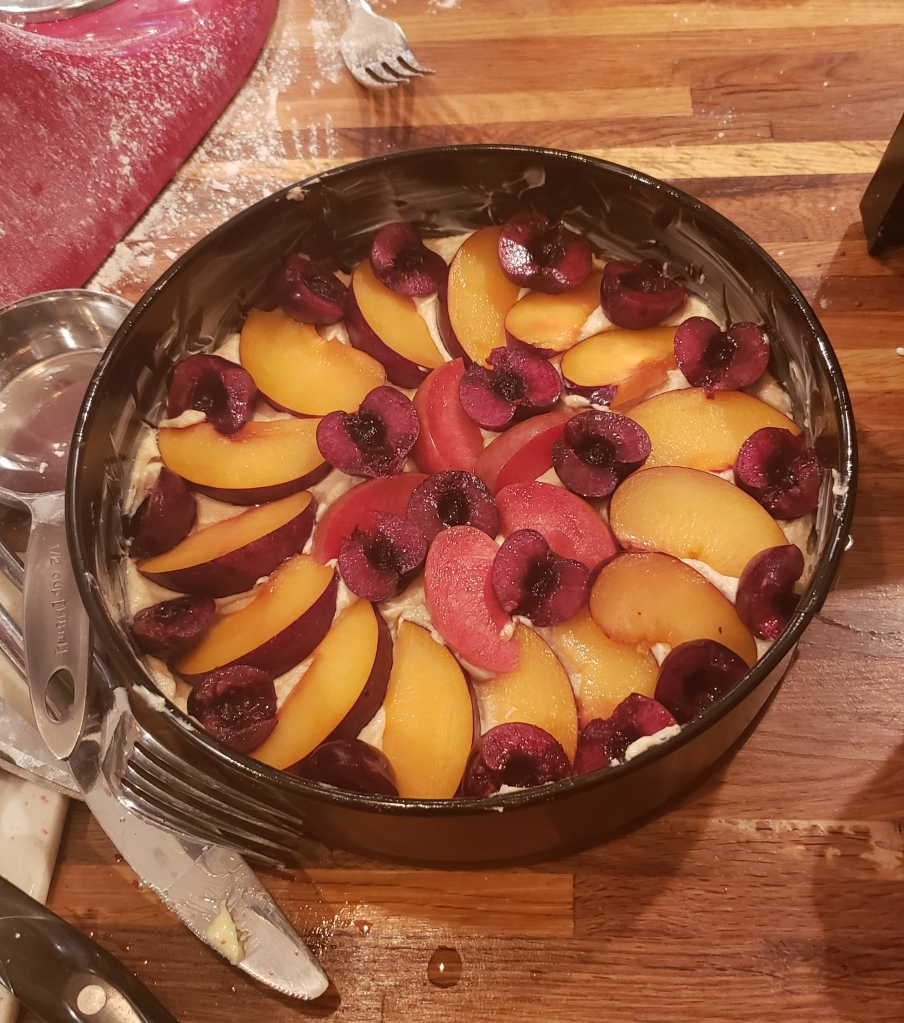 Unbaked cake with cherries, pluots and plums arranged decoratively on top.