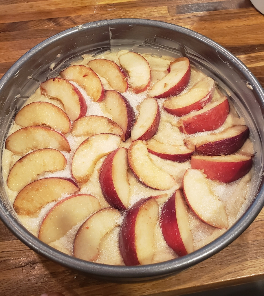 Nectarine slices are arranged in a pretty pattern on top of the cake batter before baking.